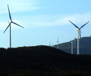 New-Zealand-breaks-renewable-energy-record