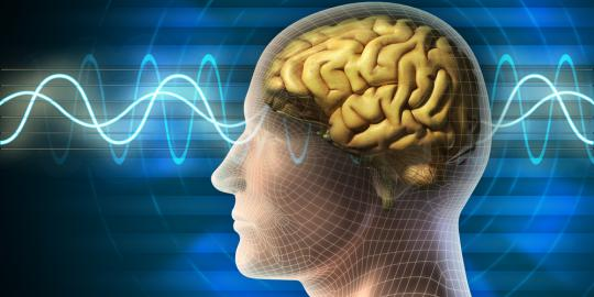 Alzheimers-disease-brain-implant
